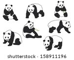 set of vector panda silhouettes | Shutterstock .eps vector #158911196