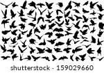 Stock vector set of silhouettes of birds 159029660