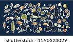 huge vector clip art hand drawn ...   Shutterstock .eps vector #1590323029