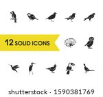 birds icons set with owl  tit...