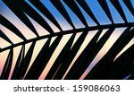 palm branch silhouette at dusk | Shutterstock . vector #159086063