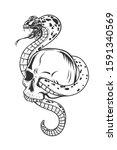 snake with human skull.vector... | Shutterstock .eps vector #1591340569