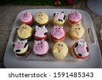 Farm Animal Themed Cupcakes...