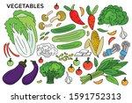 set of vegetables vector... | Shutterstock .eps vector #1591752313
