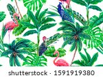 tropical palm trees  jungle... | Shutterstock . vector #1591919380