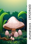 illustration of the mushrooms... | Shutterstock . vector #159209600