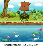 illustration of a turtle near... | Shutterstock . vector #159212324