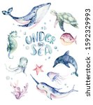 Set Of Sea Animals. Blue...