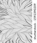 wave design black and white ...   Shutterstock .eps vector #1592390209