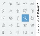 anatomy icons set with pancreas ... | Shutterstock . vector #1592440423