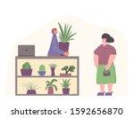 indoor plants shop. sale of... | Shutterstock .eps vector #1592656870