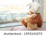 Best Friends Teddy Bear In A...
