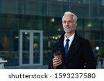 Portrait Senior Businessman...