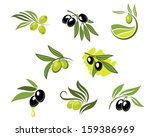 green and black olives set for... | Shutterstock .eps vector #159386969
