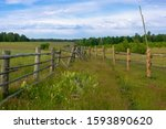 Open Space. Wooden Fences And...