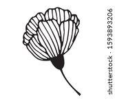 hand drawn vector illustration... | Shutterstock .eps vector #1593893206