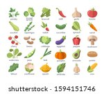 large set of named colorful... | Shutterstock .eps vector #1594151746