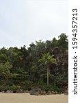 Small photo of Puerto Hermina Overflow, Jungle Look