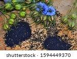 Medicinal Plant Nigella Sativa  ...
