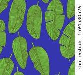 stock illustration. tropical...   Shutterstock . vector #1594530526