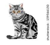 vector illustration of sitting... | Shutterstock .eps vector #159566150