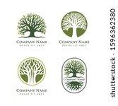 oak tree vector illustration...   Shutterstock .eps vector #1596362380