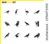 fauna icons set with robin bird ... | Shutterstock . vector #1596471943