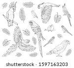 vector set bundle of hand drawn ...   Shutterstock .eps vector #1597163203