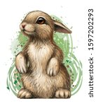 rabbit. color  artistic ...   Shutterstock .eps vector #1597202293