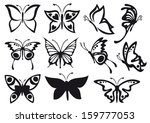 Stock vector butterfly 159777053
