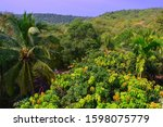 beautiful panorama from the... | Shutterstock . vector #1598075779