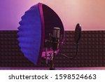 professional condenser studio...   Shutterstock . vector #1598524663