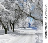 winter landscape  park  scenery ...   Shutterstock . vector #159948014