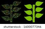 flare mesh flora plant icon... | Shutterstock .eps vector #1600077346