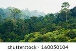Tropical Rainforest Khao Yai...