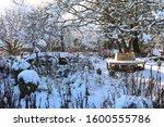 Garden In Winter With Round...