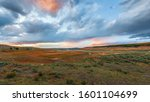 Panoramic view of Lamar Valley and Lamar River at sunset. Yellowstone National Park. Wyoming. USA