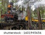 Steam Train Passing Through...