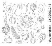 big set of hand drawn...   Shutterstock .eps vector #1602061243