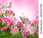 Stock photo bouquet of delicate roses and butterfly floral background 160222766