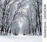 winter  park  scenery with... | Shutterstock . vector #160267628