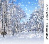 Snowstorm In Park  Winter...