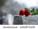 Red Roses On Grey Granite...