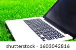 notebook on the green grass. Close up laptop pc computer. Mobile Office. Freelance business concept