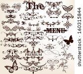 vector set of calligraphic... | Shutterstock .eps vector #160315844