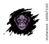 Head Vector Gorilla With...