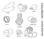 hand drawn exotic fruits... | Shutterstock .eps vector #1603867093