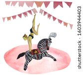Circus Acrobat Riding A Pony In ...