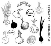 onions sketch set in black and... | Shutterstock .eps vector #160396658