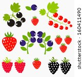 Berry Fruits Collection  ...